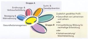 Schema_GesfördSchule_15-11